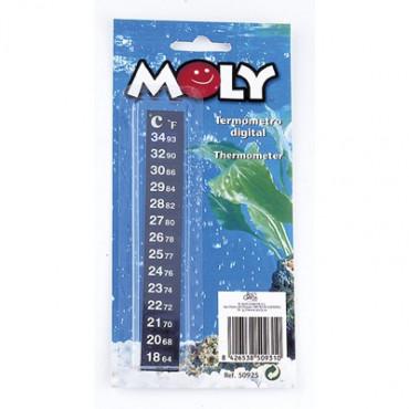 Moly - Termometro Digital