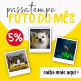 foto_do_mes