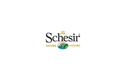 Schesir