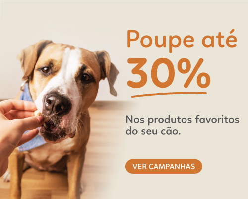 Campanhas Cão